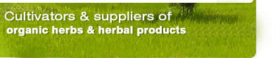 ayurvedic herbs, Indian herbs, organic herbs, herbal extracts, natural herbs